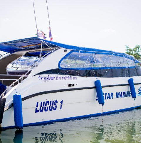 Lucus 6 Side View