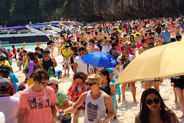 Cheap Phi Phi Island Tours