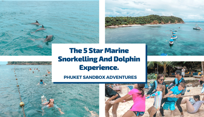 Phuket Sandbox Adventures On The 5 Star Marine Snorkelling And Dolphin Experience.